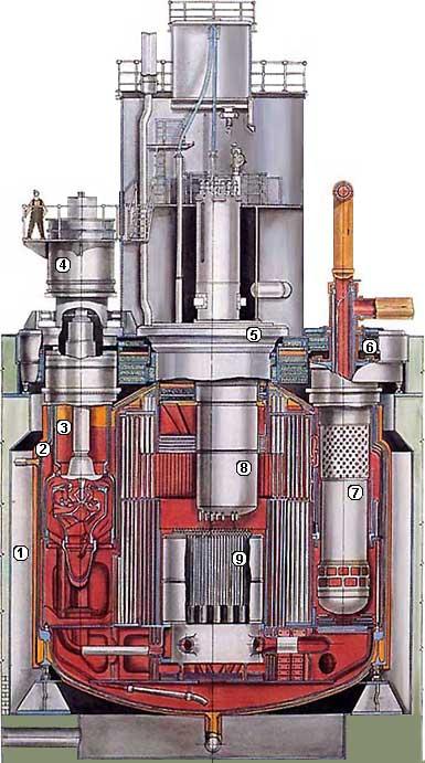 быстрых нейтронах БН-600